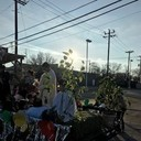 Horse Parade in Honor of Our Lady of Guadalupe photo album thumbnail 16